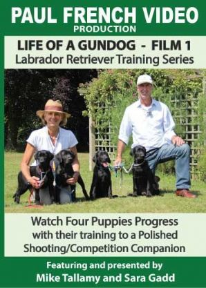 "Mike Tallamy & Sarah Gadd's ""Life of  a Gundog - Film 1: Labrador Retriever Training Series"" DVD"