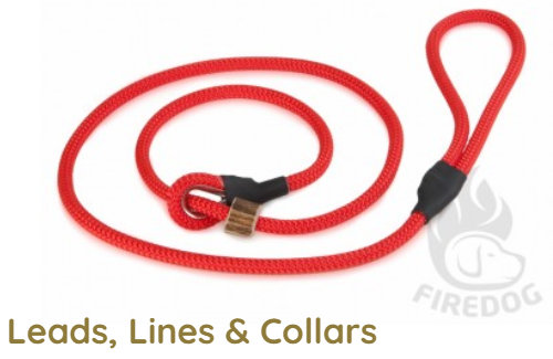 Leads, Lines & Collars